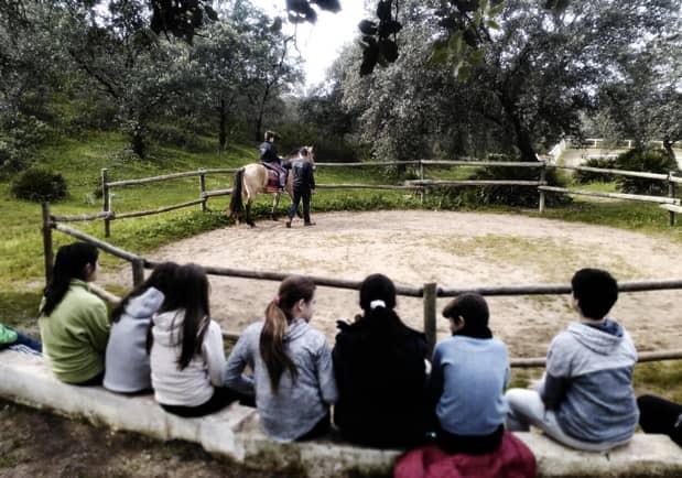 Taller de equitación encinar de Escardiel 2019 -3