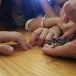 Reconociendo los anfibios